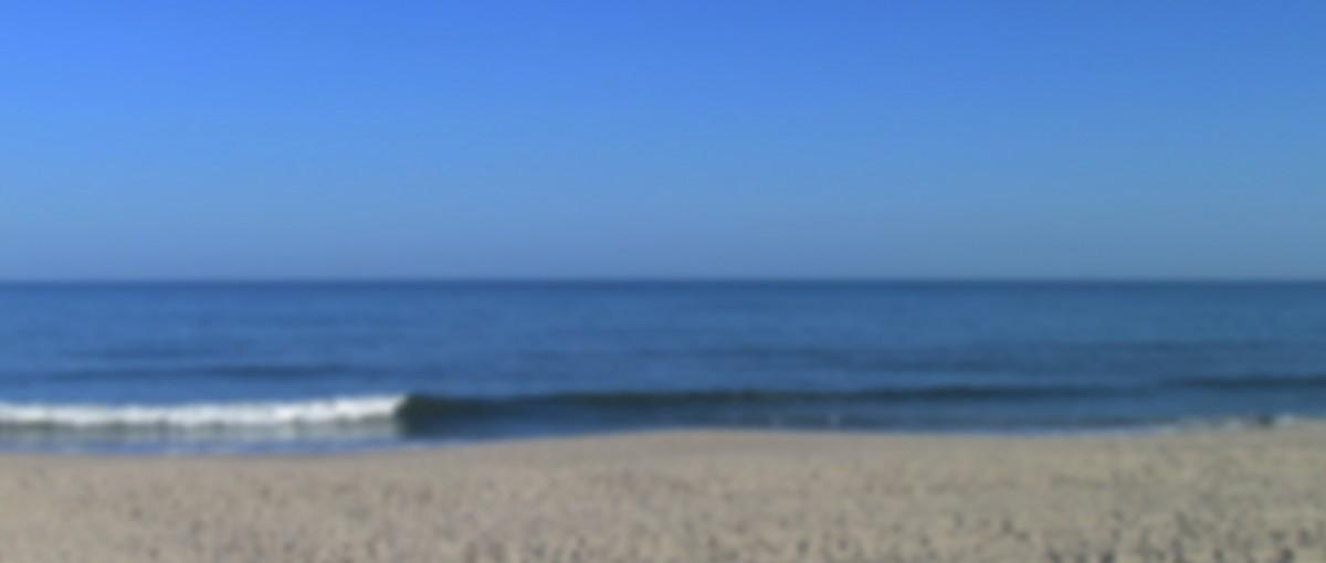vacation rentals long beach island